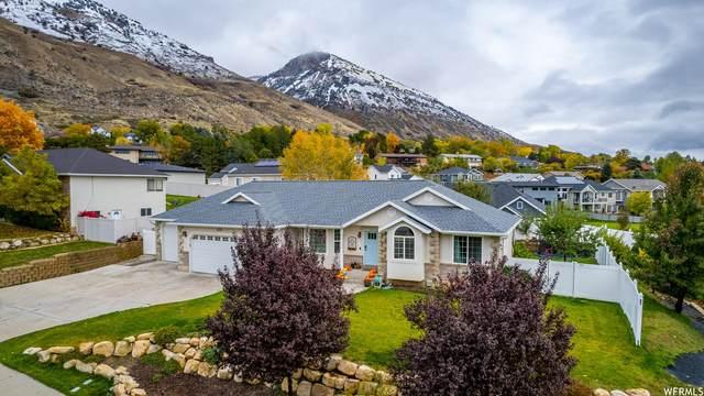 438 N 1200 E, Pleasant Grove, UT 84062 (#1775657) :: Pearson & Associates Real Estate