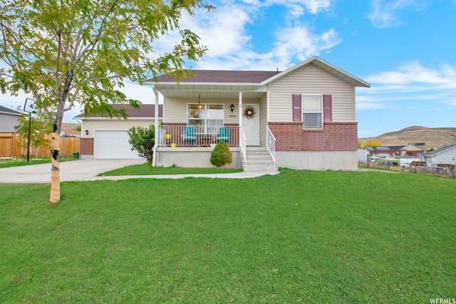 10893 N Wallace Ln, Thatcher, UT 84337 (#1776789) :: Utah Real Estate