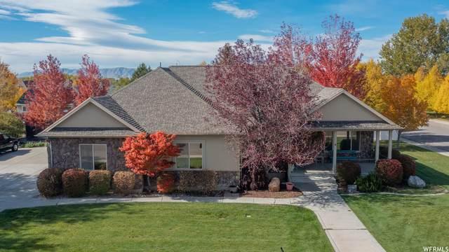 1411 N 500 E, Mapleton, UT 84664 (#1776807) :: Pearson & Associates Real Estate