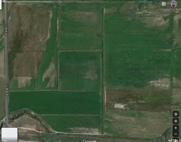 14600 S Goshen Bay Rd, Goshen, UT 84633 (#1722591) :: Livingstone Brokers