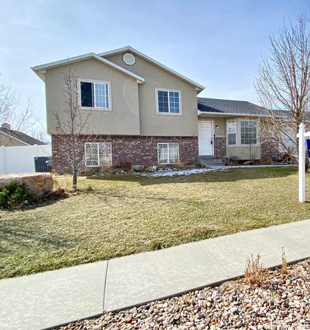 5393 W Rosemill Dr S, Riverton, UT 84096 (MLS #1730992) :: Lookout Real Estate Group