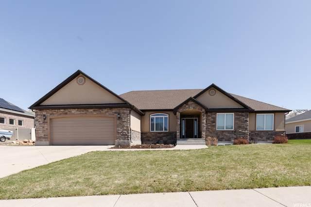 428 S 980 E, Smithfield, UT 84335 (MLS #1733928) :: Lookout Real Estate Group