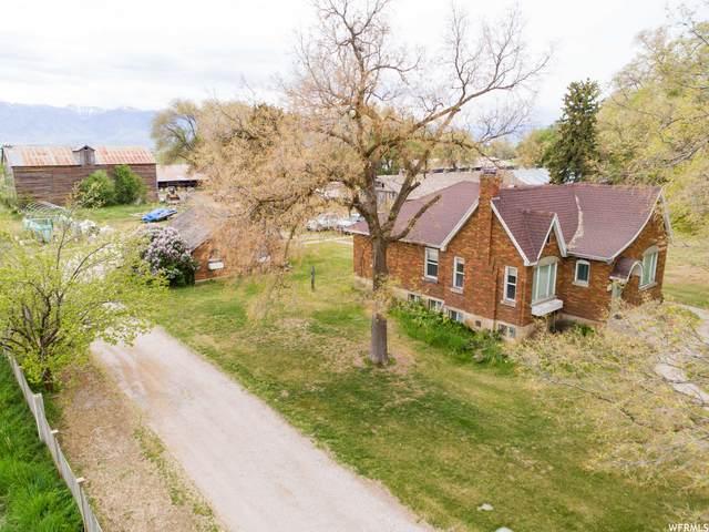 12690 N 4800 W, Cornish, UT 84308 (#1739095) :: Gurr Real Estate