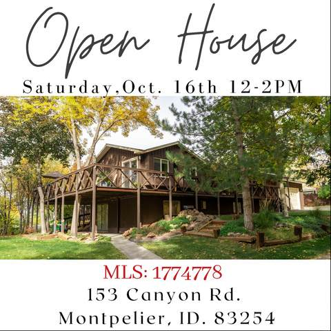 153 Canyon Rd, Montpelier, ID 83254 (MLS #1774778) :: Lookout Real Estate Group