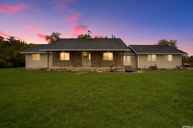 6160 W 8000 N, Elwood, UT 84337 (#1776781) :: Utah Real Estate