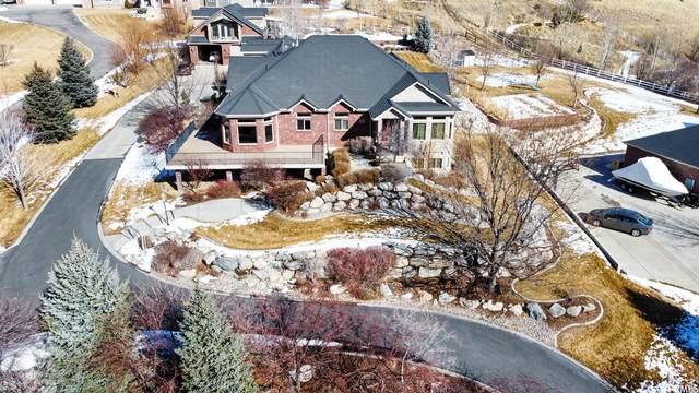 3990 Summer Ridge Rd, Morgan, UT 84050 (MLS #1723588) :: Summit Sotheby's International Realty