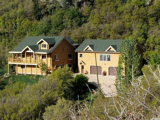 331 Jungfrau Hill Rd, Midway, UT 84049 (#1740662) :: Utah Real Estate