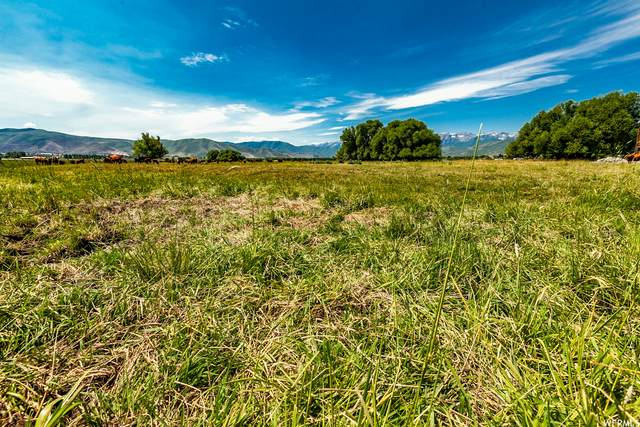 1450 W 1200 N, Heber City, UT 84032 (#1745070) :: UVO Group | Realty One Group Signature