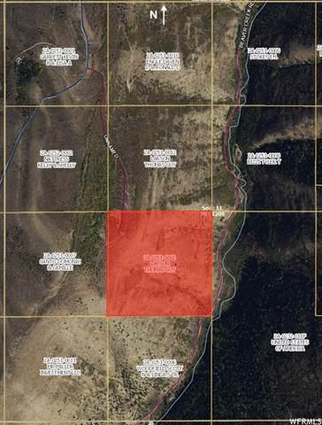 Lower Fish Creek Rd, Scofield, UT 84526 (#1769641) :: Pearson & Associates Real Estate