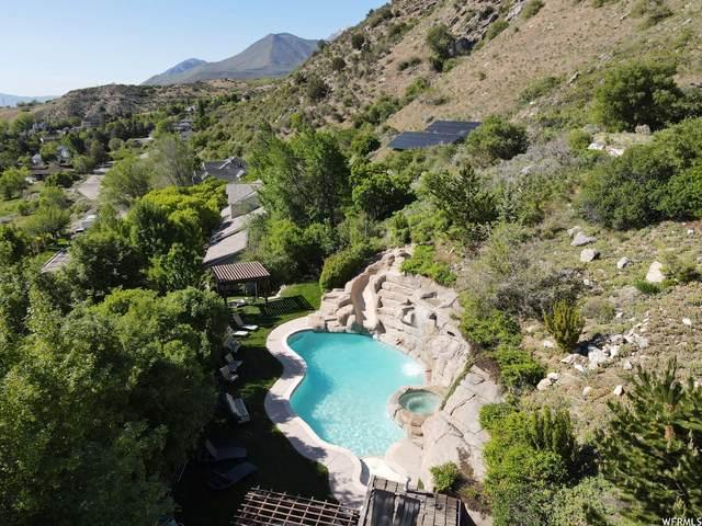 4384 N Mile High Dr, Provo, UT 84604 (#1747395) :: Utah Real Estate