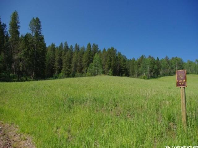 47 N Stock Ln, Wayan, ID 83285 (#1175185) :: Colemere Realty Associates