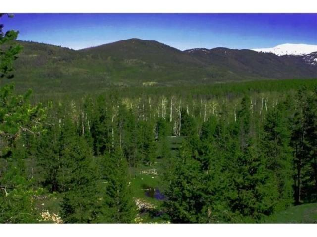 2105 Hayden Lot 9 Frk, Kamas, UT 84036 (MLS #1240423) :: High Country Properties