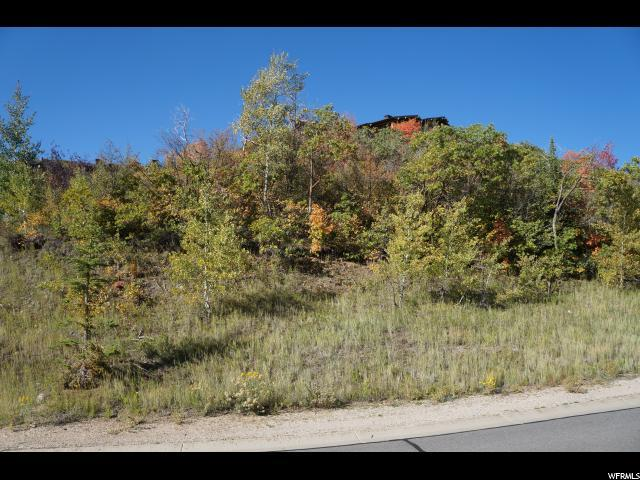 2721 W Deer Hollow Rd, Heber City, UT 84032 (MLS #1371556) :: High Country Properties