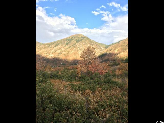 Oak Dr S, Woodland Hills, UT 84653 (#1410439) :: Big Key Real Estate