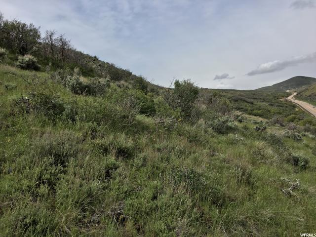 5600 Browns Canyon Rd, Peoa, UT 84061 (MLS #1452149) :: High Country Properties