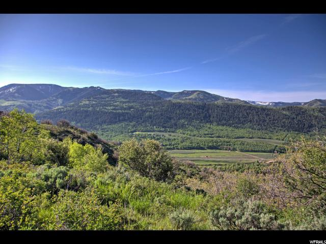 149 Mountain Aire Lower Lp, Oakley, UT 84055 (MLS #1458151) :: High Country Properties