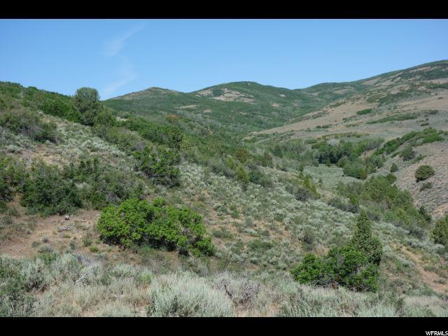 8 W Indian Creek Rd. Rd S, Kamas, UT 84036 (MLS #1460419) :: High Country Properties