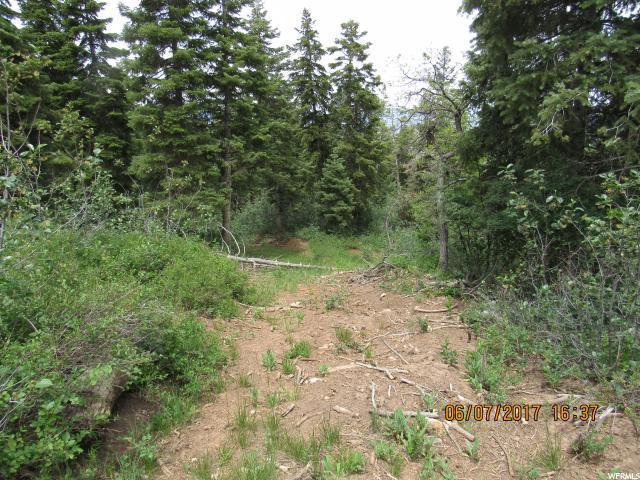 5 Pine Ridge, Mount Pleasant, UT 84647 (#1463441) :: Big Key Real Estate