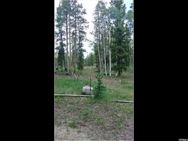Address Not Published, Kamas, UT 84036 (MLS #1465442) :: High Country Properties