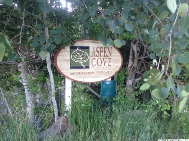 89 Mountain Ridge Cir, Scofield, UT 84526 (#1465750) :: Big Key Real Estate