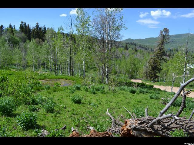 2292 Forestmeadow Rd, Wanship, UT 84017 (MLS #1466097) :: High Country Properties