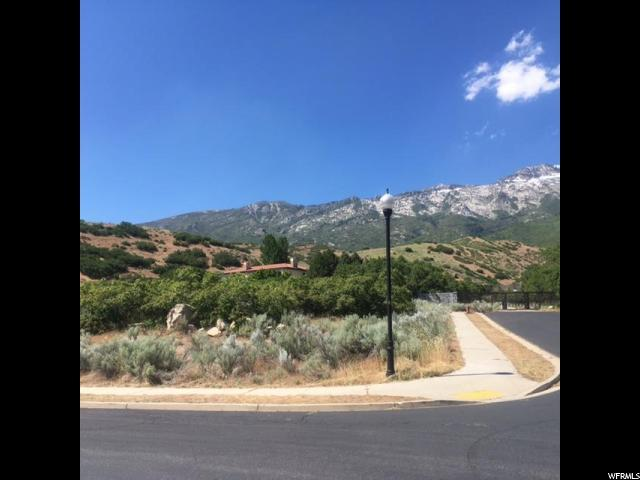 487 E East View Ln, Alpine, UT 84004 (#1467270) :: Select Group Utah