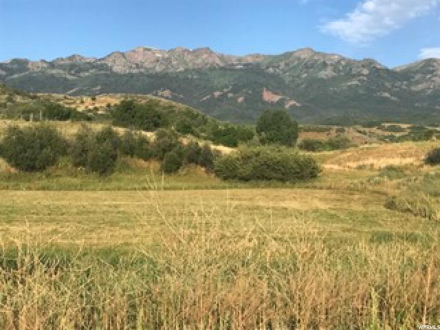 4034 N Thurston Dr, Mountain Green, UT 84050 (#1469403) :: The Fields Team