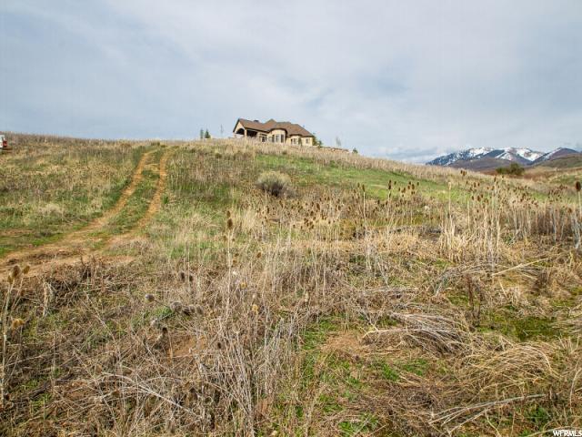 3416 W Spring Cir N, Mountain Green, UT 84050 (#1471637) :: Keller Williams Legacy