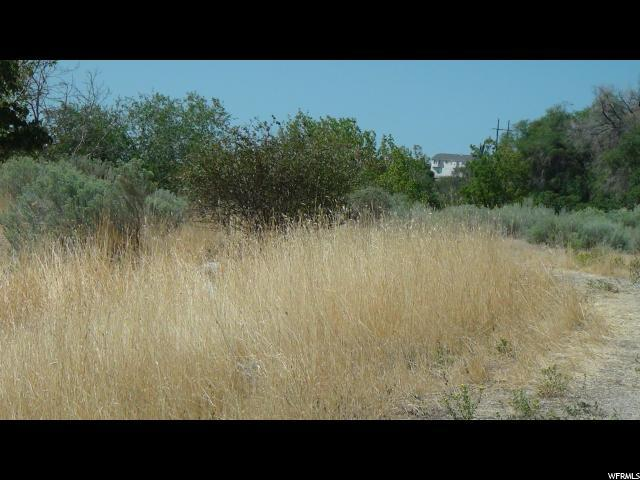 Address Not Published, Pleasant Grove, UT 84062 (#1474618) :: Rex Real Estate Team