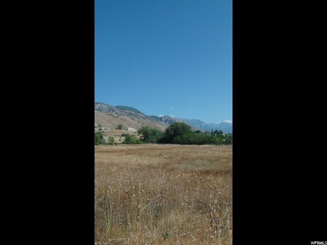 Address Not Published, Pleasant Grove, UT 84062 (#1474619) :: Rex Real Estate Team
