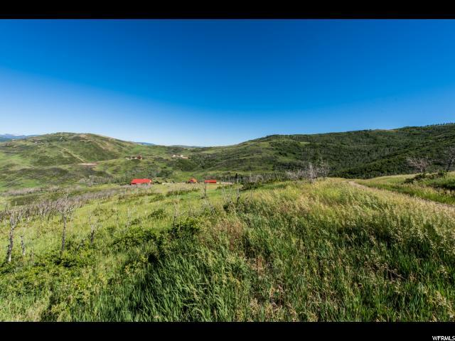 3 Kent Canyon Dr, Wanship, UT 84017 (MLS #1475943) :: High Country Properties