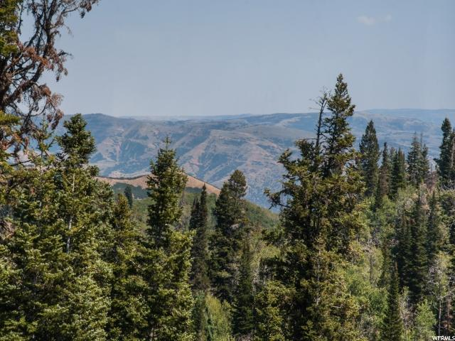2232 Pine Meadow Dr, Wanship, UT 84017 (MLS #1476565) :: High Country Properties