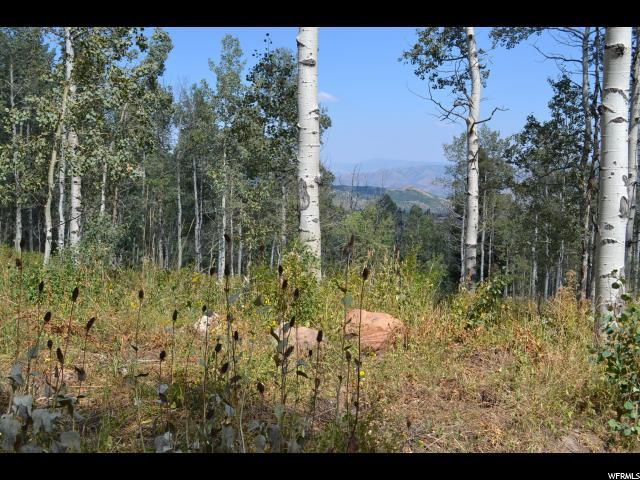 2481 Forestmeadow Rd, Wanship, UT 84017 (MLS #1477118) :: High Country Properties