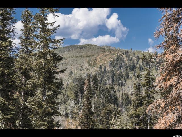 1508 Navajo Rd, Wanship, UT 84017 (MLS #1479749) :: High Country Properties