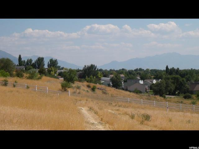 Address Not Published, Pleasant Grove, UT 84062 (#1480582) :: Colemere Realty Associates