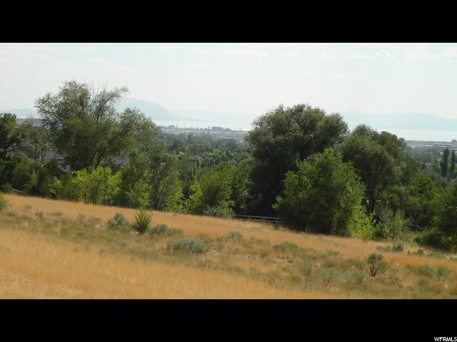 Address Not Published, Pleasant Grove, UT 84062 (#1480585) :: Colemere Realty Associates