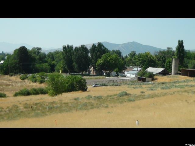 Address Not Published, Pleasant Grove, UT 84062 (#1480588) :: Colemere Realty Associates