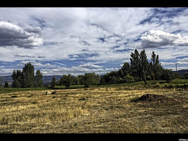 1132 N Dutch Highland Pkwy, Midway, UT 84049 (MLS #1481665) :: High Country Properties
