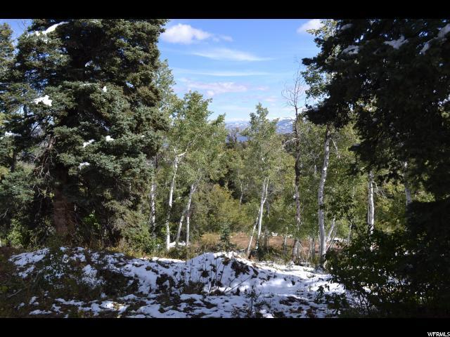 2349 Navajo Dr, Wanship, UT 84017 (MLS #1482719) :: High Country Properties