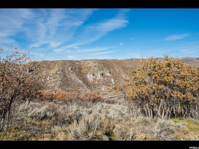2104 Canyon Gate Rd, Park City, UT 84098 (#1487641) :: Colemere Realty Associates