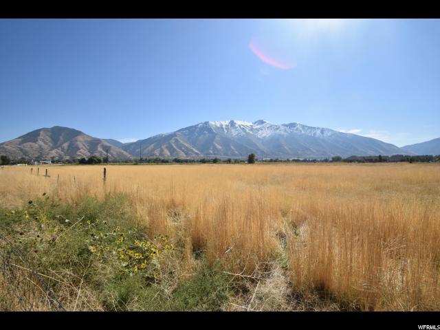 1040 W 800 N, Mapleton, UT 84664 (#1488114) :: The Utah Homes Team with HomeSmart Advantage