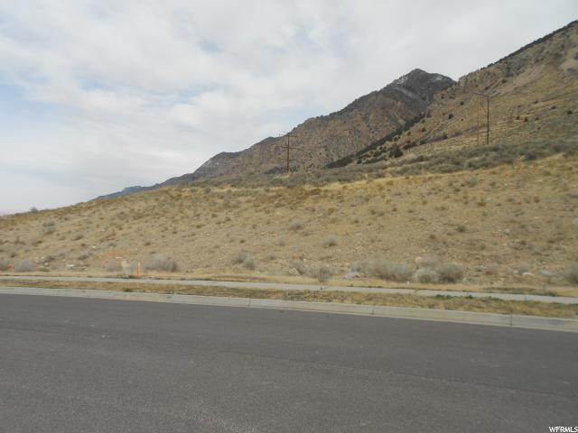 1297 N Kotter, Brigham City, UT 84302 (#1491725) :: Big Key Real Estate