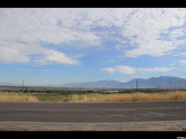 577 E Unadilla, Elk Ridge, UT 84651 (#1493256) :: The Fields Team