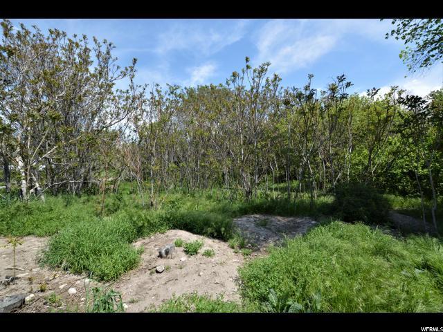 3716 S Forest Hills Dr E, Millcreek, UT 84106 (#1499950) :: Big Key Real Estate