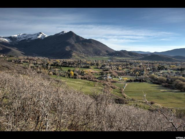 500 S 850 W, Midway, UT 84049 (MLS #1500796) :: High Country Properties