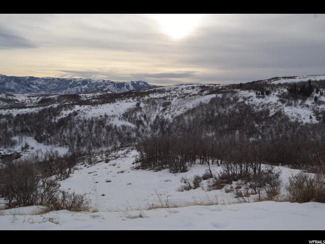 3256 Forest Meadow Rd, Wanship, UT 84017 (MLS #1502278) :: High Country Properties