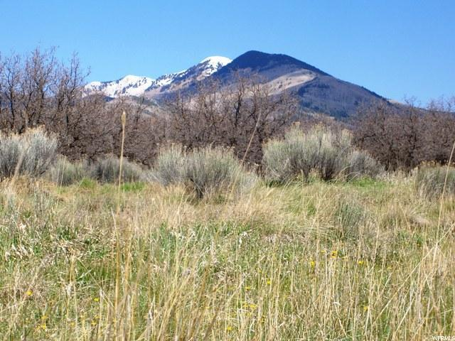 Address Not Published, La Sal, UT 84530 (#1505446) :: Colemere Realty Associates