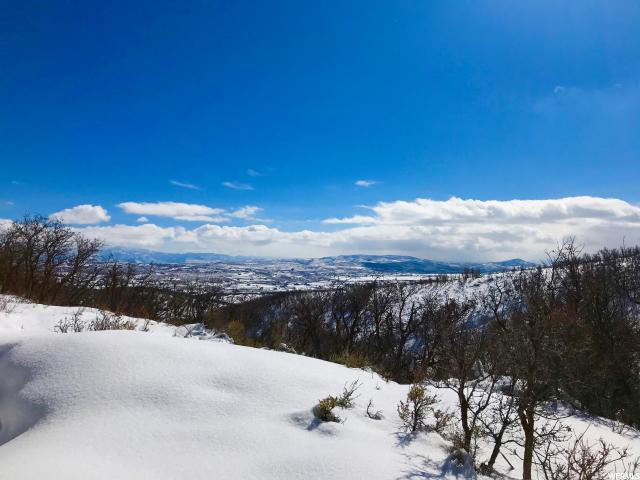26 Kimball Canyon Rd, Park City, UT 84098 (MLS #1507978) :: High Country Properties