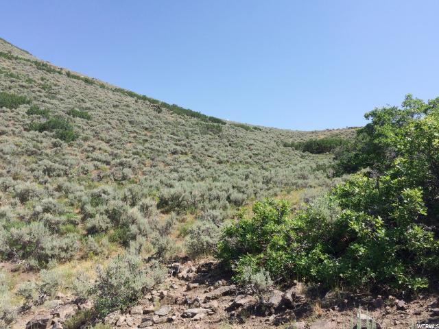 40 Garff Ranches, Kamas, UT 84036 (MLS #1508824) :: High Country Properties