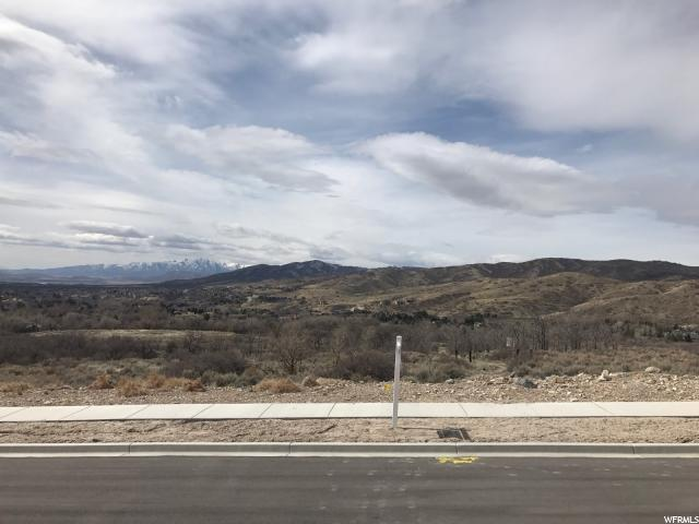 13150 N Prospector Way, Alpine, UT 84004 (#1512893) :: Colemere Realty Associates